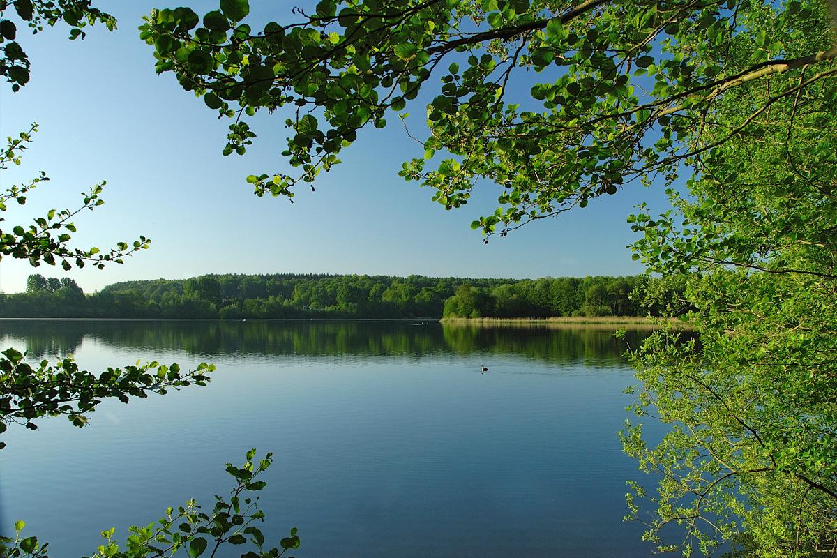 Lac de bambois situ fosses la ville venez d couvrir for Piscine du lac tours tarif